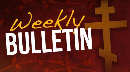 Bulletin 13 September 2020