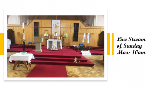 Holy Mass 19 July 2020